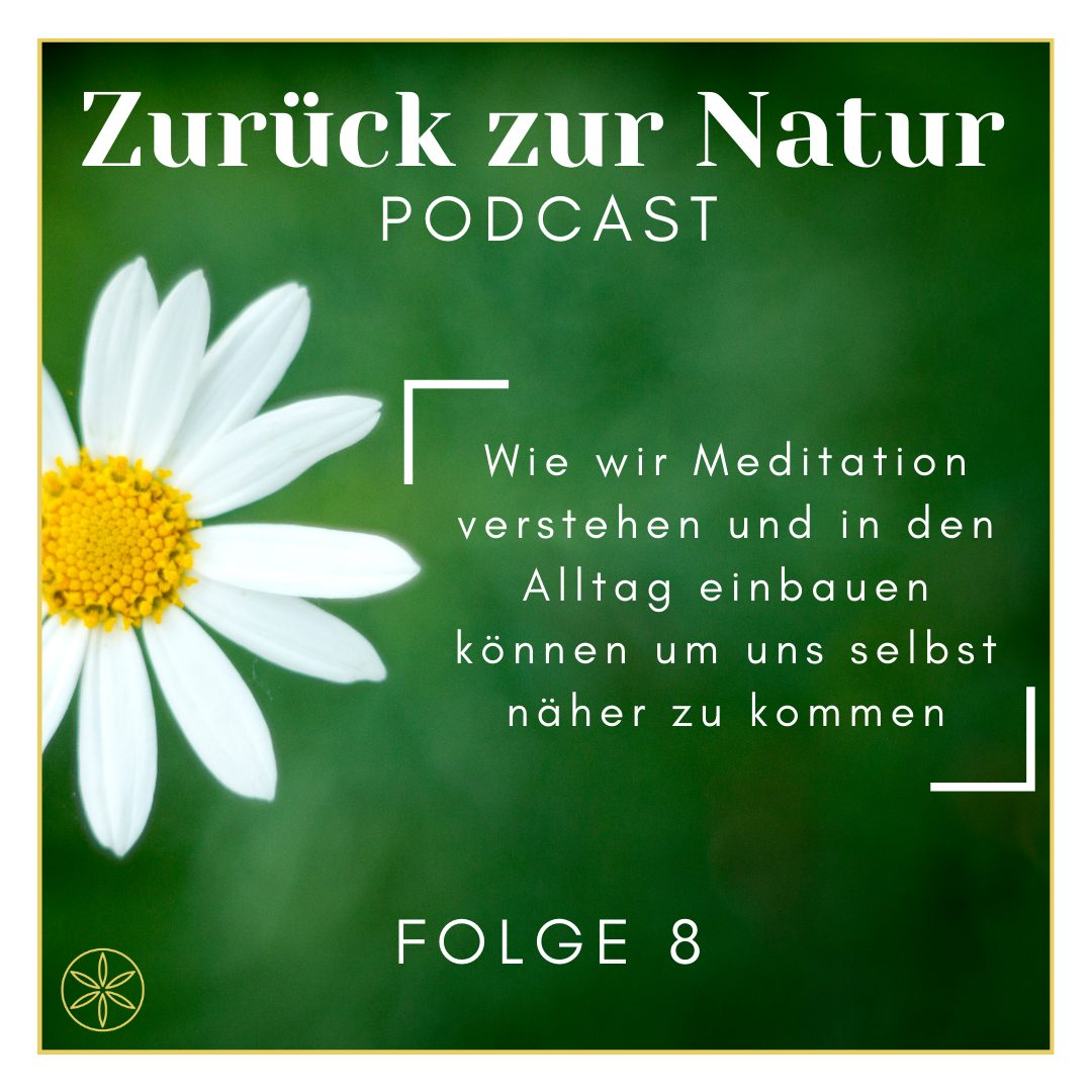 Read more about the article Wie wir Meditation verstehen und in den Alltag einbauen können um uns selbst näher zu kommen
