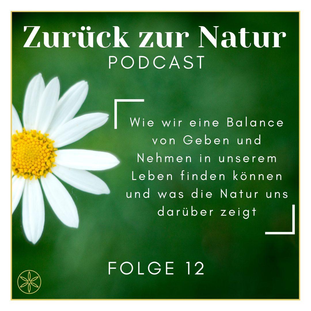 Read more about the article Wie wir eine Balance von Geben und Nehmen in unserem Leben finden können und was die Natur uns darüber zeigt